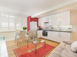 Luxury 1 bedroom apartment in Chelsea 8 mins tubes - London vacation rentals