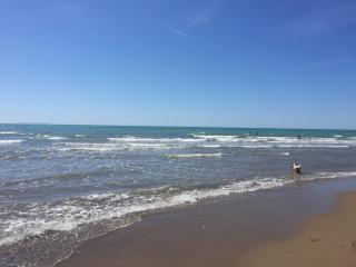 San Vincenzo appartamento mare - San Vincenzo vacation rentals