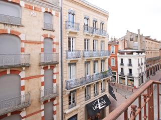 Bow Window Rue des Arts: T3 standing confortable - Toulouse vacation rentals