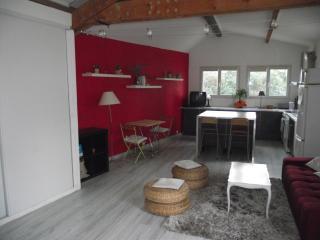 Loft de 55 M2 avec Climatisation et piscine - Montferrier Sur Lez vacation rentals
