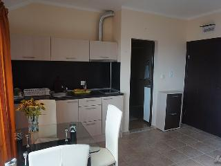 Apartments in the ecological park with a beautiful - Kosharitsa vacation rentals