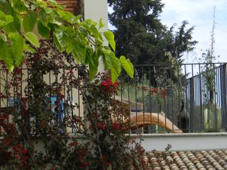 Casa Bardella,  tranquil country house near Ortona - Ortona vacation rentals