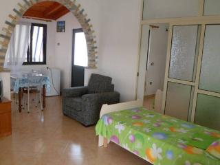 Beautiful house 6 min from the beach with garden - Durres vacation rentals