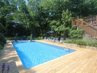 Lushly Landscaped Contemporary With Pool - East Hampton vacation rentals