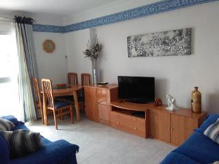 301 Benalmadena holiday rental - Benalmadena vacation rentals