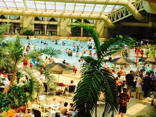 1bd Deluxe Wyndham Glacier Canyon Resort Wisconsin - Baraboo vacation rentals
