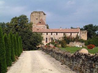 Appartement dans château Féodal a Saint Emilion - Daignac vacation rentals