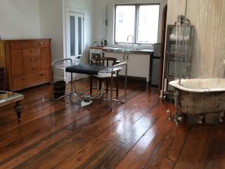 Designer Treehouse Artist Studio - Lawrenceville vacation rentals