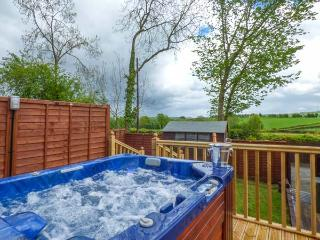 BWTHYN TY NEWYDD, all ground floor, countryside views, hot tub, Welshpool, Ref 931076 - Welshpool vacation rentals