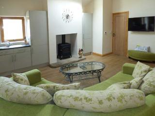 PLOUGHSHARE, woodburning stove, open plan, all ground floor, Garstang, Ref 937841 - Garstang vacation rentals