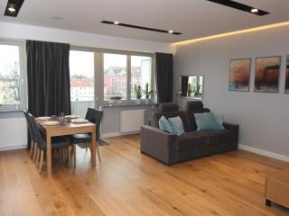 Nice 1 bedroom Condo in Szczecin with Internet Access - Szczecin vacation rentals