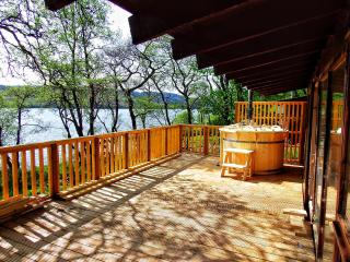 Lochside Log Cabin with Hot Tub & BBQ Hut - Dalavich vacation rentals