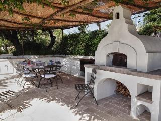 Perfect 7 bedroom Villa in Island of Capri - Island of Capri vacation rentals