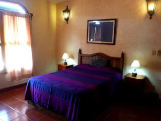 Damiana Tamarindo Apartment Rentals in Zihua - Zihuatanejo vacation rentals