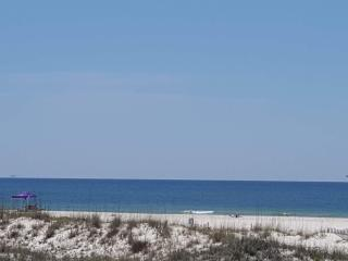 Amazing View of the Beach! Paw Paw's Place - Fort Morgan vacation rentals