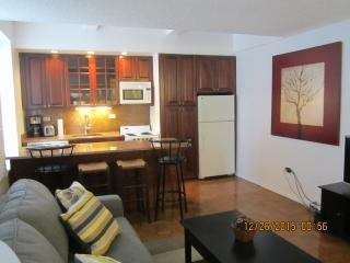 2 Bedroom in NYC (Min 3 Months rental) - New York City vacation rentals