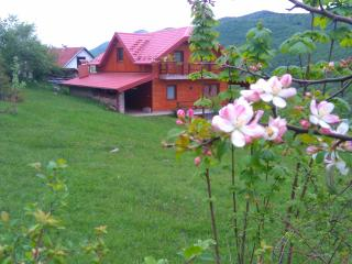 Nice House with Internet Access and Washing Machine - Kuterevo vacation rentals