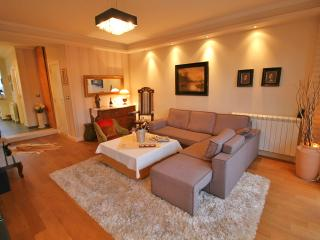 Extremely Rich and pleasantly furnished +breakfast - Belgrade vacation rentals