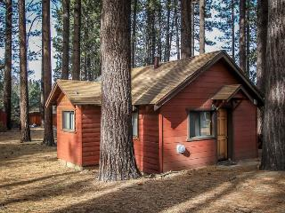 Cozy House with Television and Refrigerator - Big Bear Lake vacation rentals