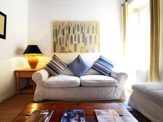 Trevi elegant apartment - Rome vacation rentals