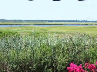 Spectacular Sunsets & Meadowland Water Views! - Ocean City vacation rentals