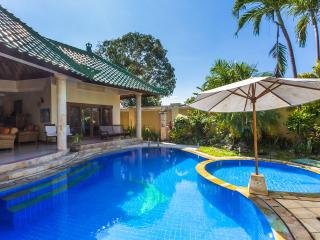 Luxury 2/3 bedroom Villa in Sanur Bali,With Wifi - Sanur vacation rentals
