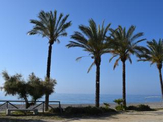 Nice Condo with Internet Access and A/C - Castell de Ferro vacation rentals