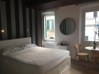 Cozy Apartment with Internet Access and A/C - Florence vacation rentals