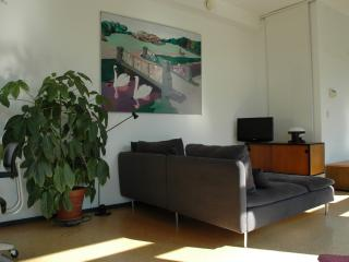 Sunlit apartment in historical Jordaan - Amsterdam vacation rentals
