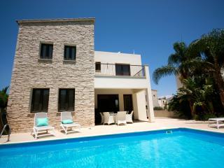 Luxury 2 bedroom villa near Zygi with private pool - Kalavasos vacation rentals