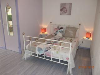 Maison d'hôtes l'Escale Saônoise - Allerey-sur-Saone vacation rentals
