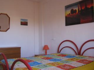 Pisa Leaning Tower apartment. FREE WIFI - Pisa vacation rentals