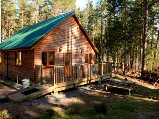 Beautiful 2 bedroom Chalet in Logie Coldstone with Kettle - Logie Coldstone vacation rentals