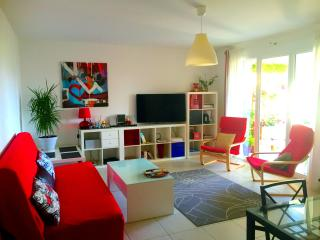 Cannes Center 2bedroms apt with a Large Terrace - Cannes vacation rentals