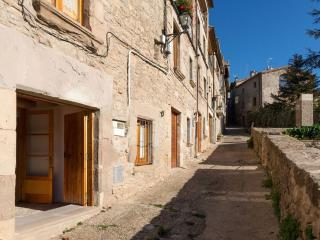 Village house in the Pyrenees in charming town - Alpens vacation rentals