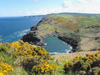 Beautiful House with Internet Access and Water Views - Boscastle vacation rentals
