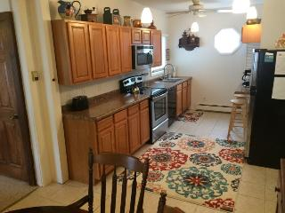 Nice 5 bedroom House in South Haven - South Haven vacation rentals