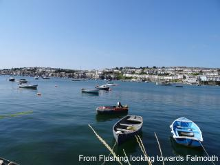 5 Summercourt, Penryn, Cornwall - Penryn vacation rentals