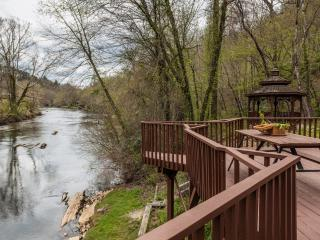 Nanny's Shanty - Sits right on the Toccoa River - Mineral Bluff vacation rentals