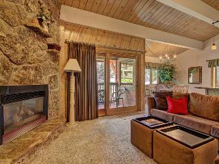 Nice Condo with Fitness Room and Wireless Internet - Steamboat Springs vacation rentals
