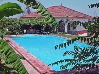 Nice House with Short Breaks Allowed and Long Term Rentals Allowed - Olivares vacation rentals