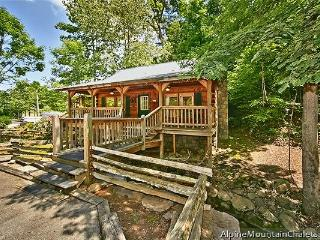 Cozy 1 bedroom Cabin in Pigeon Forge - Pigeon Forge vacation rentals