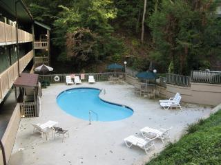 Falling Waters - Pigeon Forge vacation rentals