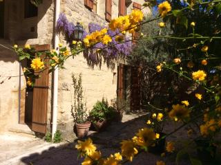 Beautiful 1 bedroom Gite in Saint-Siffret - Saint-Siffret vacation rentals