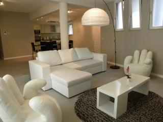 Nice Condo with Internet Access and Washing Machine - Brussels vacation rentals
