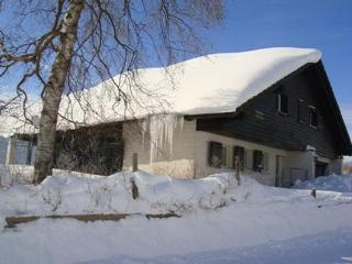 Bright 5 bedroom Chalet in Wildhaus - Wildhaus vacation rentals