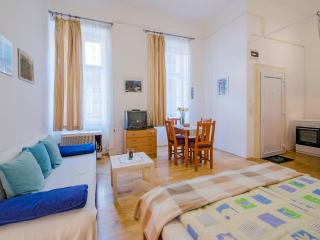 Lovely Studio in Budapest 7th district - Budapest vacation rentals