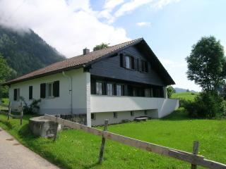 Nice Chalet with Internet Access and Long Term Rentals Allowed - Wildhaus vacation rentals