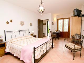 Katia studio, Hilltop Guesthouse, Tuscany - Aulla vacation rentals
