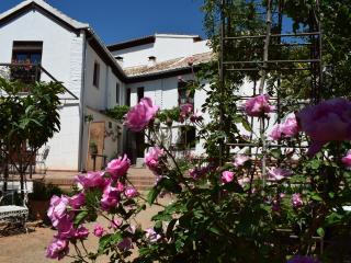 Casa completa con alberca (10 personas max)-Carmen - Granada vacation rentals